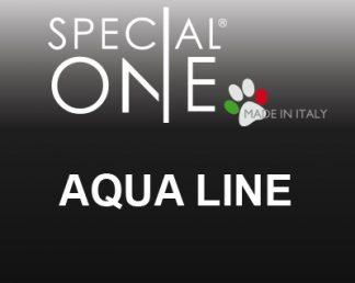 Aqua Line
